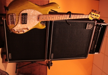 Complete Guitars and Bass
