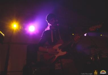 Professional Reggae Guitars