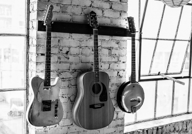 electric, acoustic, bass, and steel guitars / dobro / ganjo