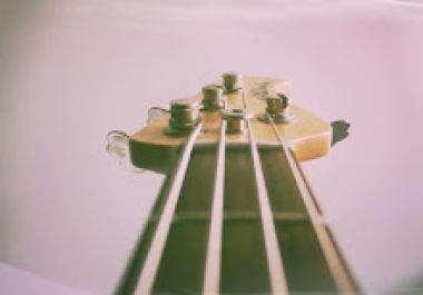 Bassfretted/fretless,  upright or synth each song