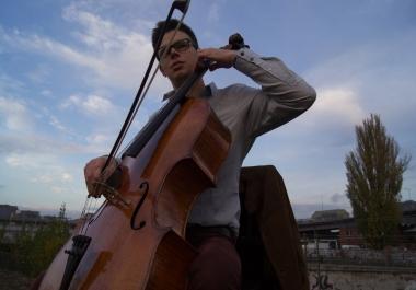 violin/viola/upper strings