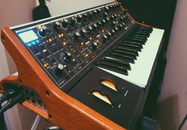 Get some MOOG on your track
